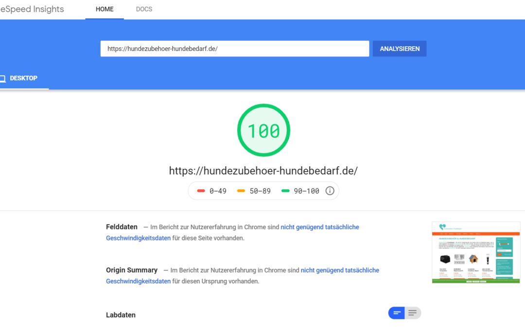 Google PageSpeed 100 erreichen