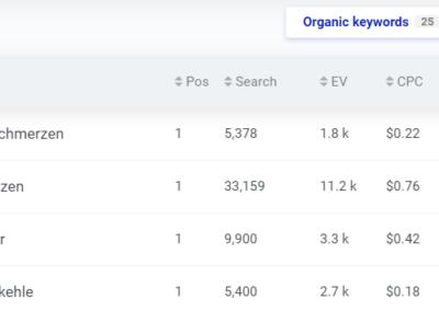 Kevin Schilling Beispiel Google Rankings Gesundheitswesen